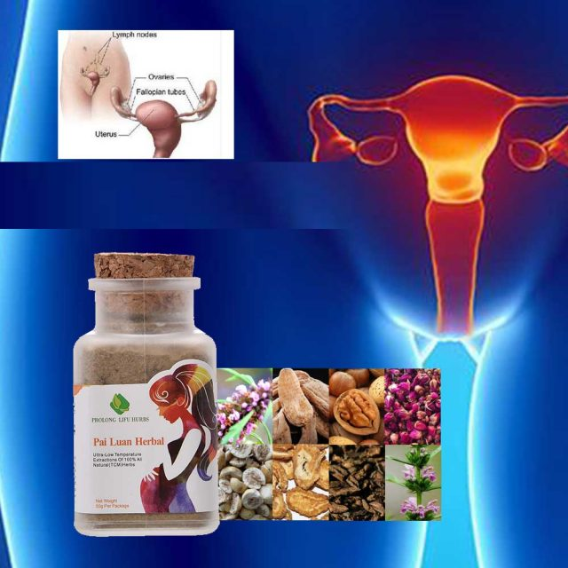 Herbal Cure for Female Infertility.and Menstrual Disorder